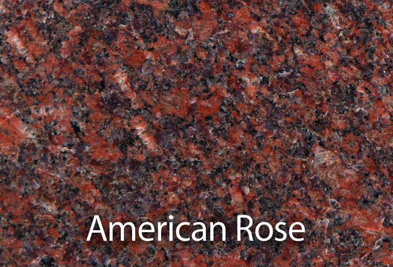 0004_AmericanRose.jpg
