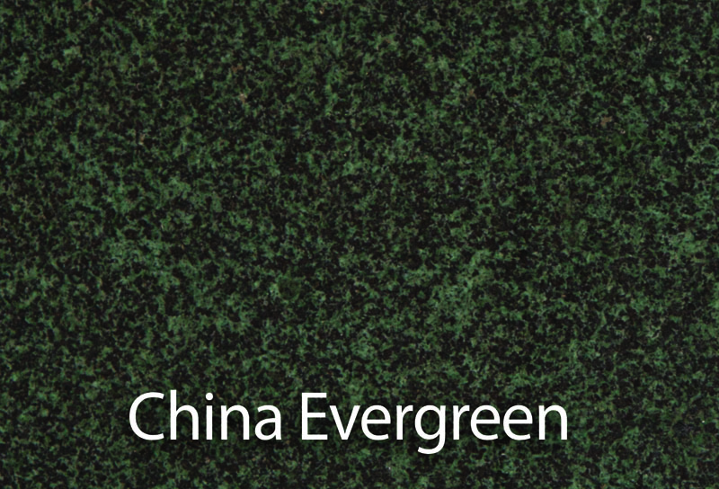 0024_ChinaEvergreen.jpg